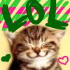Happy Kitten Smiling LOL
