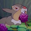 | Thumper! |