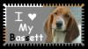 I love My Bassett
