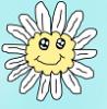 Kawaii daisy!