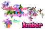 Wising you a wonderful day, Amber