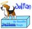 Julian, my beagle