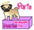 Paris, my pug