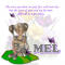 Mel - Tears - Butterflies