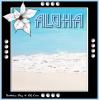 Aloha Summer~!