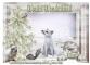 Winter Wonderland - Jane