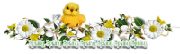 Spring Daisy Divider