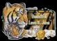 Tiger - Jane