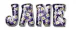 Purple Daisies - Jane