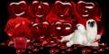 Love it Valentine's Day