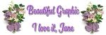 BEAUTIFUL GRAPHIC - JANE