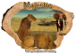 Wild Animals - Majestic