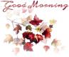 Good Morning 🍁