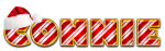 CONNIE RED  HAT CANDY CANE TEXT