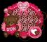Valentine's Day Bear