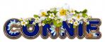 DAISY FLOWER CONNIE TEXT