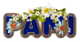 DAISY FLOWER PAMI TEXT