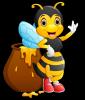 HONEY BEE ILY 2