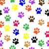 MULTI COLORED PAW PRINTS, ANIMALS, BACKGROUNDS