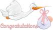 Congratulations, STORK, BABIES, BABY GIRL, CONGRATULATIONS