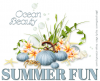 SUMMER FUN (OCEAN BEAUTY)