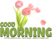 GOOD MORNING, TULIPS, GREETINGS, TEXT