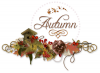 Autumn, Seasons, Fall, Text