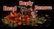 Autumn -RRR