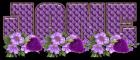 Purple flowers with strawberries - Jane