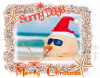 Merry Christmas /Sunny Days!