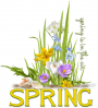 SPRING IS IN THE AIR THIS MORNING, FLOWERS, SEASONAL, TEXT
