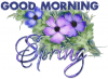 GOOD MORNING SPRING, SEASONAL, FLOWERS, TEXT