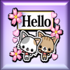 HELLO STICKER