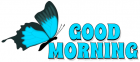 GOOD MORNING, BUTTERFLY, NATURE, TEXT