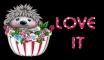 Hedgehog - Love it