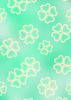 4 leaf clovers on mint green background