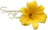 SUMMER FUN, YELLOW, LILY, TEXT