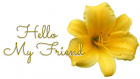 HELLO MY FRIEND, YELLOW, LILY, TEXT