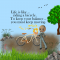 Life - Balance - Bicycle - Keep Moving