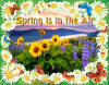 Spring is in the Air - by Robbie
