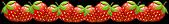 Strawberry Divider